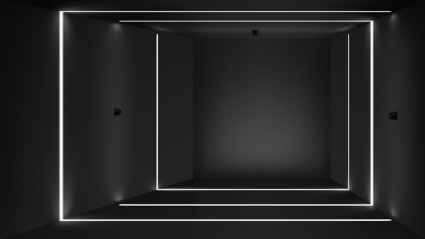 Фасадный светильник LOOCH, фото 4